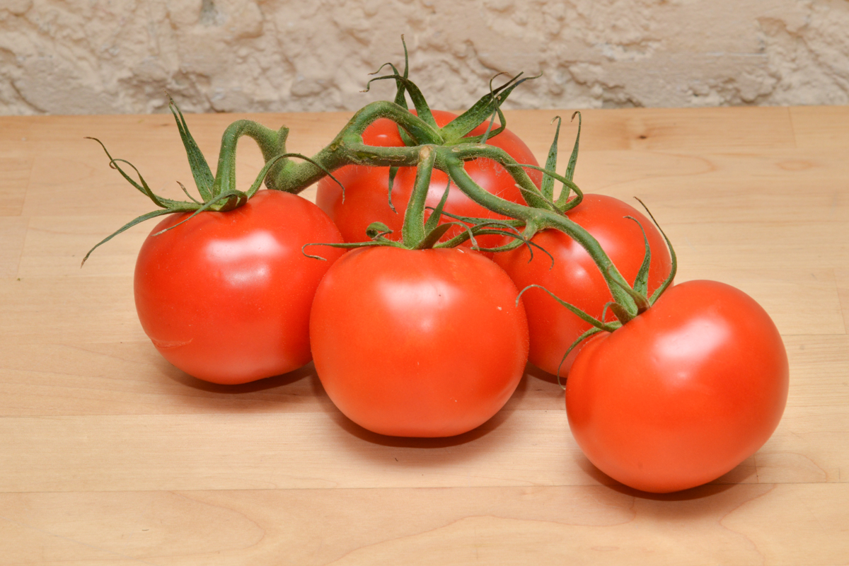 tomate grappe provence